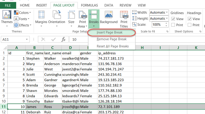 insert column page break excel vba