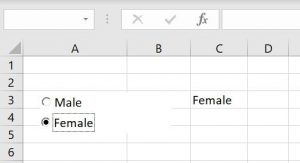 vba option button female