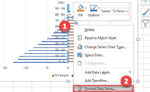 Format Data Series Population Pyramid