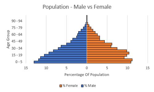 Population Pyramid Graph Excel